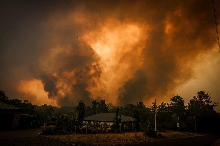 Hasil gambar untuk australian open 2020 forrest fire